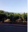 Suelo en venta en Esquibien, Murcia, Murcia, Calle San Fernando, 56.000 €, 1624 m2