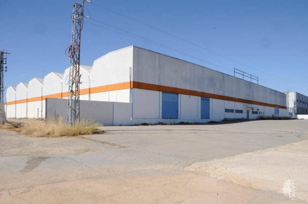 Local en venta en Las Vegas, Lucena, Córdoba, Calle Carrera A-340 Lucena A Puente Genil Km, 1.011.660 €, 5207 m2