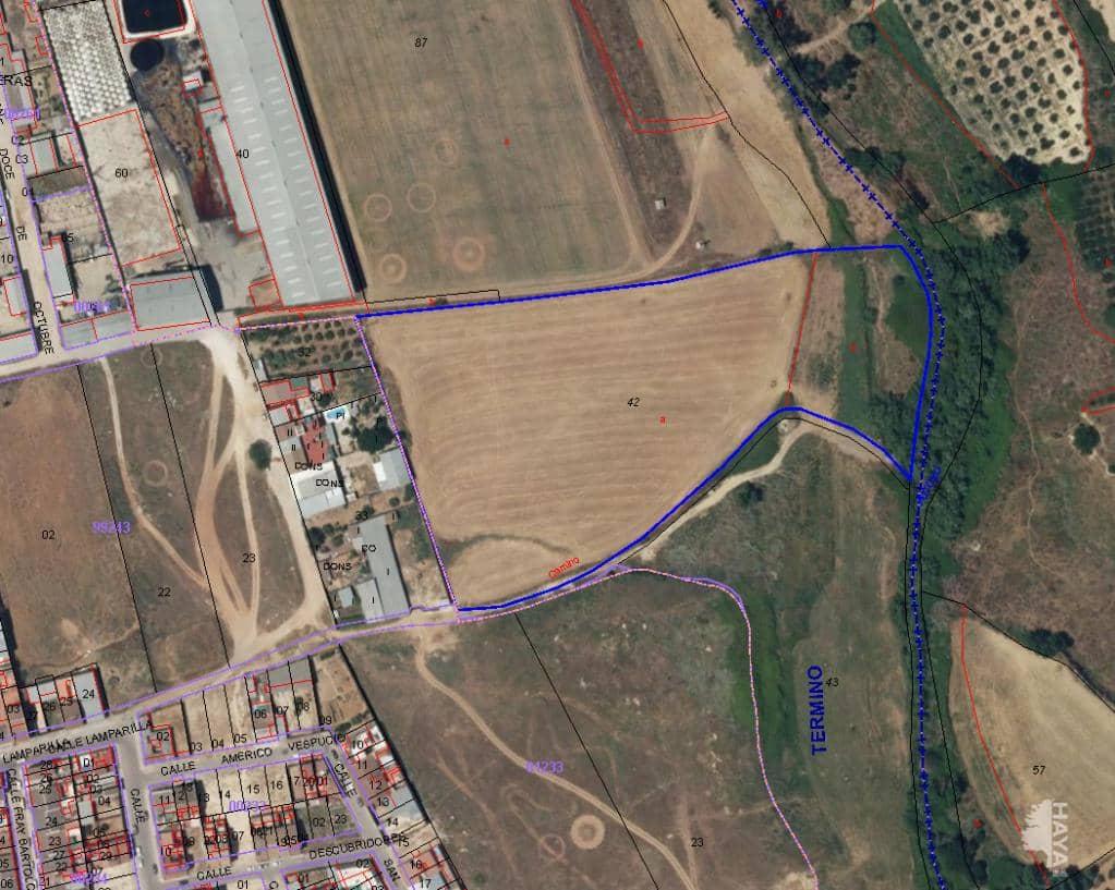 Suelo en venta en Pilas, Sevilla, Calle Lamparilla (la), 110.000 €, 8585 m2