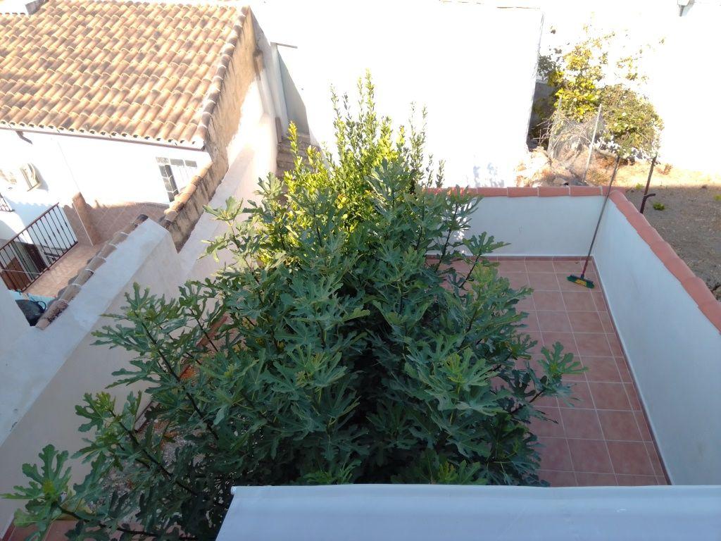 Casa en venta en Martos, Jaén, Plaza Llanete, 75.000 €, 4 habitaciones, 2 baños, 260 m2
