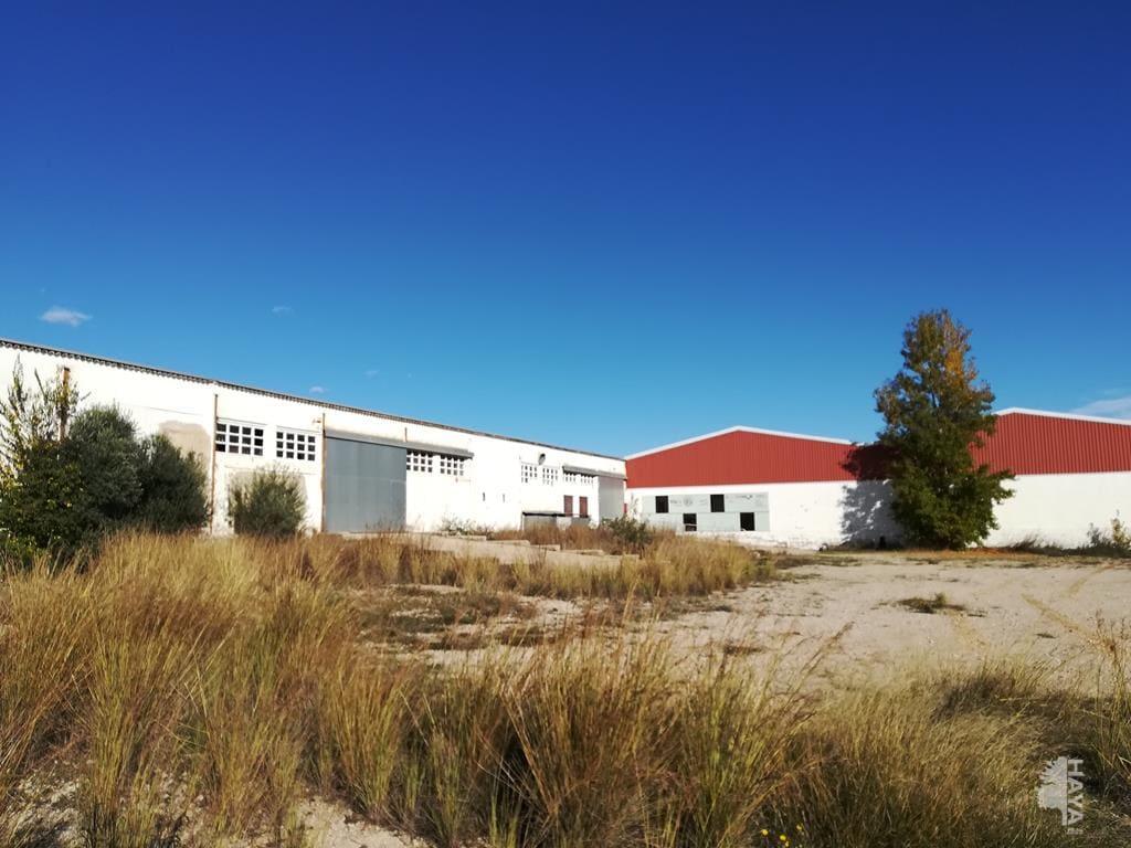 Industrial en venta en Rossell, Rossell, Castellón, Calle Polígono 5, 496.001 €, 5659 m2