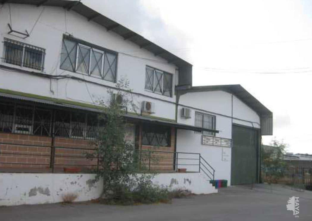 Industrial en venta en Calasparra, Murcia, Calle Libertad, 743.000 €, 3619 m2