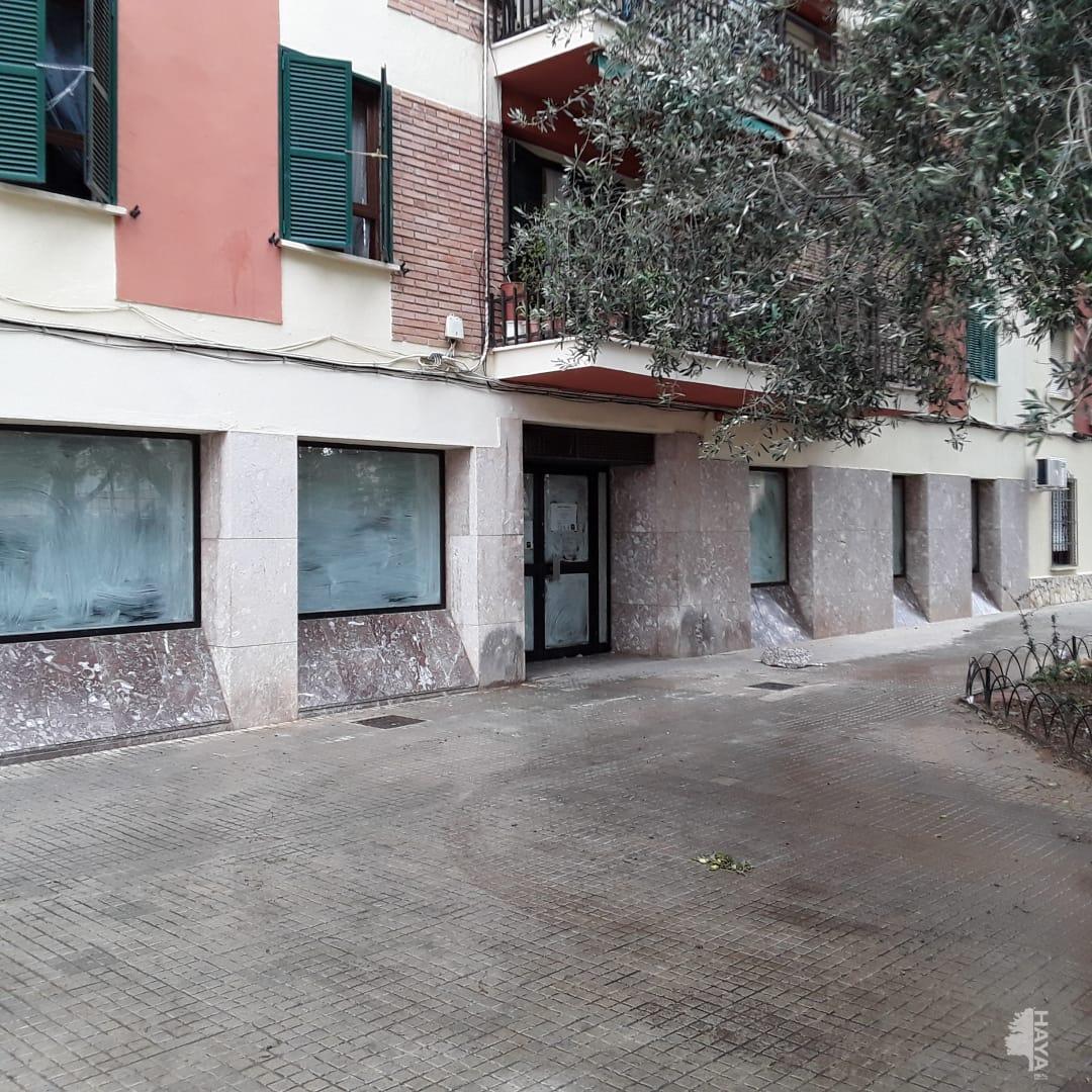 Local en venta en Palma de Mallorca, Baleares, Calle Cala Gran, 287.667 €, 243 m2