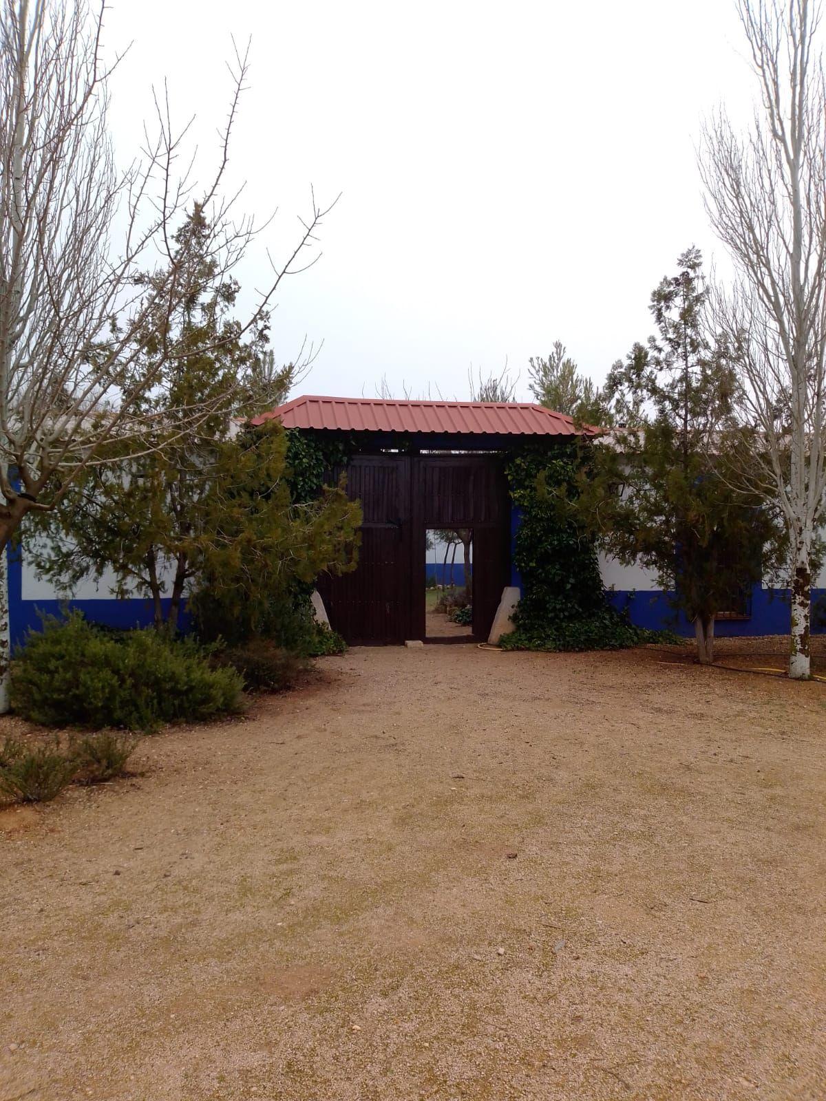Suelo en venta en Tomelloso, Ciudad Real, Camino Real, 120.000 €, 5000 m2