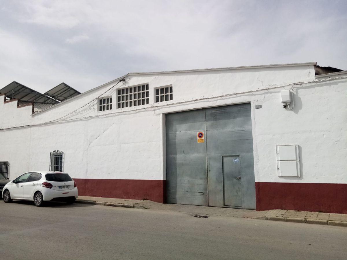 Industrial en alquiler en Tomelloso, Ciudad Real, Calle Manterola, 350 €, 264 m2