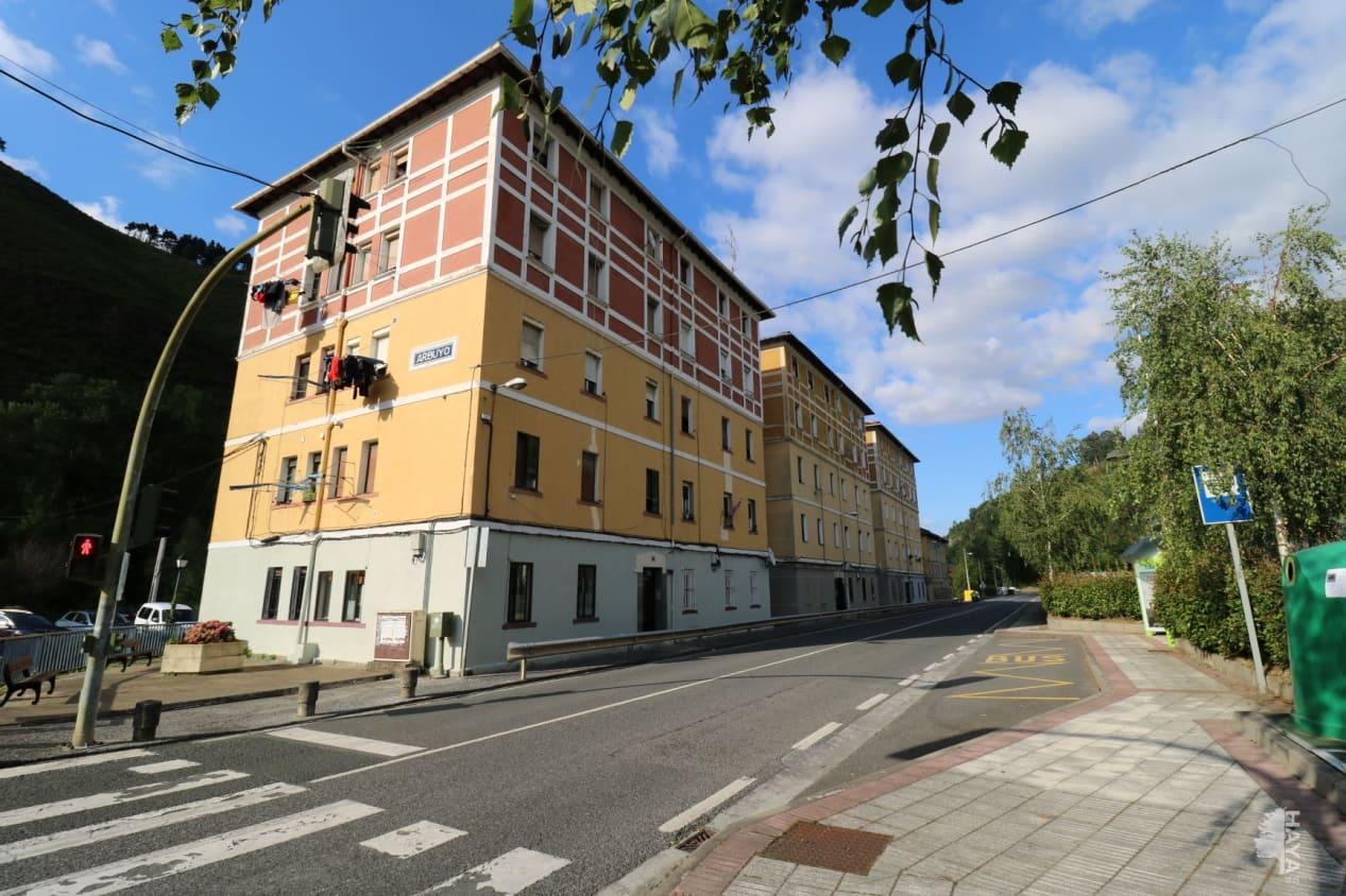 Piso en venta en Goikoetxea, Alonsotegi, Vizcaya, Calle Barrio Arbuio, 60.900 €, 2 habitaciones, 1 baño, 49 m2