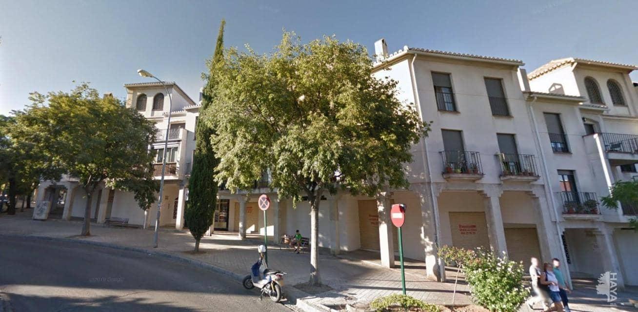 Local en venta en Distrito Genil, Granada, Granada, Carretera Huetor Vega (de), 27.000 €, 26 m2
