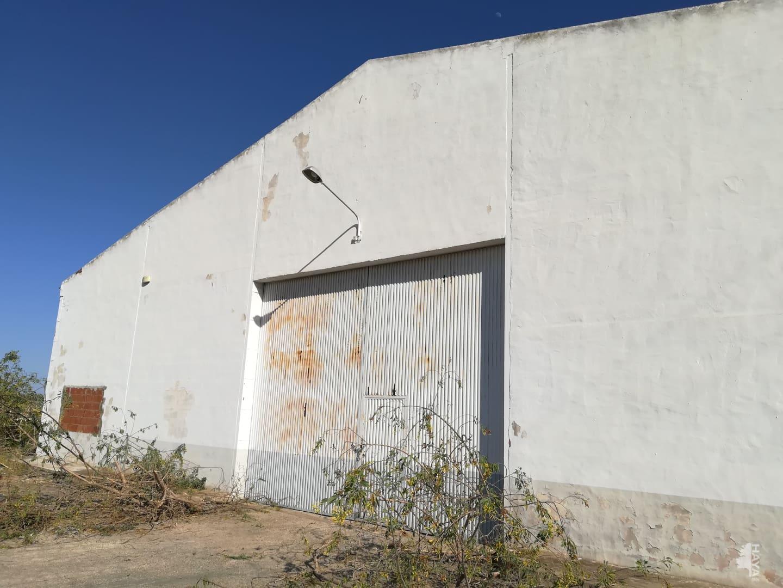 Industrial en venta en Jacarilla, Alicante, Carretera Torrevieja, 577.512 €, 4000 m2