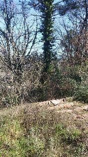 Suelo en venta en Suelo en Maçanet de la Selva, Girona, 9.395 €, 722 m2