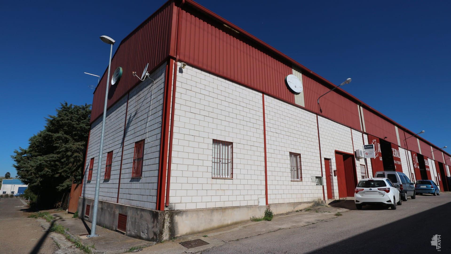 Industrial en venta en Trujillo, Cáceres, Calle Polígono la Dehesilla, 60.500 €, 376 m2