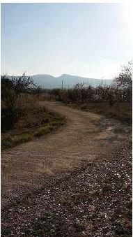 Suelo en venta en Ibi, Alicante, Calle Cv-805 Km. 3 Sector Np-i 6 del Pgou de Ibi, 172.600 €, 21718 m2