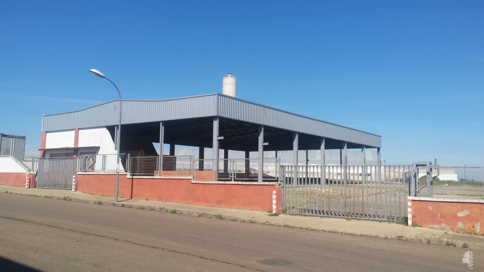 Industrial en venta en Puebla de Sancho Pérez, Badajoz, Calle Zafra, 226.400 €, 660 m2