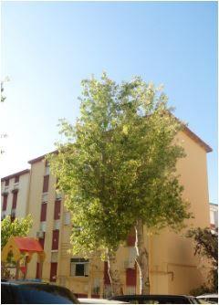 Piso en venta en Jaén, Jaén, Calle Virgen del Mar, 51.500 €, 52 m2