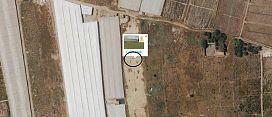 Suelo en venta en Santa María del Águila, El Ejido, Almería, Calle Sus-25-ta, 971.005 €, 4296 m2