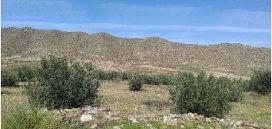 Suelo en venta en Tabernas, Tabernas, Almería, Calle Polígono 32, 130.200 €, 29398 m2