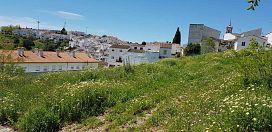 Suelo en venta en Residencial la Palacia, Cortes de la Frontera, Málaga, Avenida Acacias, 85.426 €, 3137 m2