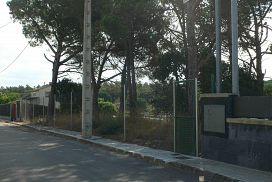 Suelo en venta en Can Cavaller, Sils, Girona, Calle Barcelona, 54.692 €, 1000 m2