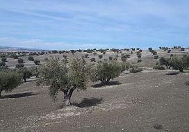 Suelo en venta en Alameda de la Sagra, Alameda de la Sagra, Toledo, Paraje Cerro Clamor, 62.800 €, 12833 m2