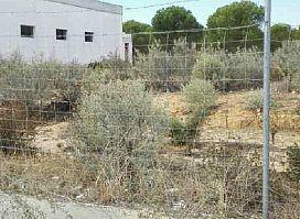 Suelo en venta en El Rocío, Almonte, Huelva, Paraje Polígono Industrial Matalagrana, 57.000 €, 1400 m2