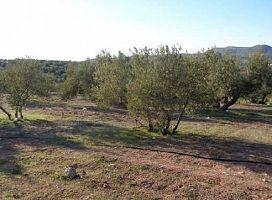 Suelo en venta en Suelo en Alcaudete, Jaén, 7.000 €, 4509 m2