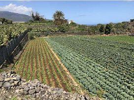 Suelo en venta en San Antonio, Breña Baja, Santa Cruz de Tenerife, Paraje Morro de los Frailes Y Cutillas, 224.500 €, 14690 m2