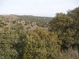 Suelo en venta en Ituero Y Lama, Ituero Y Lama, Segovia, Calle Parcela, 93.000 €, 20781 m2