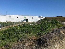 Suelo en venta en La Palma del Condado, Huelva, Calle Chucena Ii, 112.500 €, 4692 m2