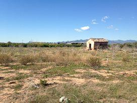 Suelo en venta en Suelo en Burriana, Castellón, 8.100 €, 1424,43 m2