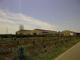 Suelo en venta en Nules, Castellón, Calle Arset, 118.900 €, 43212 m2
