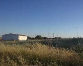 Suelo en venta en Villarrubio, Villarrubio, Cuenca, Urbanización Pozo Pijon, 74.800 €, 93 m2
