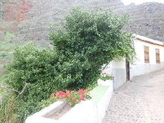 Casa en venta en Agulo, Santa Cruz de Tenerife, Calle Poeta Trujillo Armas, 54.000 €, 4 habitaciones, 1 baño, 148 m2