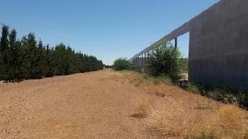 Industrial en venta en Casa de la Dehesa, Carrión de Calatrava, Ciudad Real, Calle Parale los Parrales, 641.083 €, 2069 m2