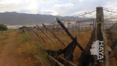 Suelo en venta en El Ejido, Almería, Lugar Sus-26-ta, 167.700 €, 6075 m2
