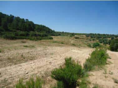 Suelo en venta en Valdealgorfa, Teruel, Lugar Partida Val Palomera, 3.586 €, 34600 m2