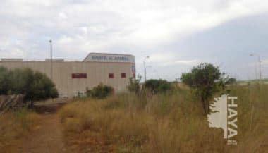 Suelo en venta en Suelo en El Ejido, Almería, 130.100 €, 6075 m2