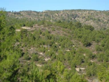 Suelo en venta en Ribesalbes, Castellón, Lugar Partida Contadors, 1.708 €, 5357 m2