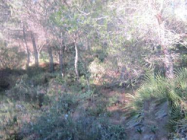Suelo en venta en Suelo en Benicarló, Castellón, 1.339 €, 138 m2