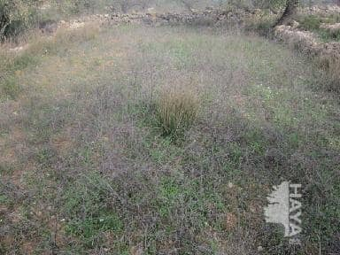 Suelo en venta en Suelo en Cervera del Maestre, Castellón, 4.000 €, 14000 m2