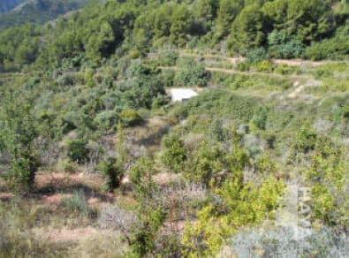 Suelo en venta en Artana, Artana, Castellón, Calle la Peña, Raco O Barranco de Nules, 97.500 €, 104736 m2