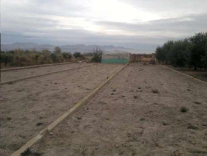 Suelo en venta en Playa de Chilches, Chilches/xilxes, Castellón, Lugar Partida la Sort, 4.380 €, 1160 m2