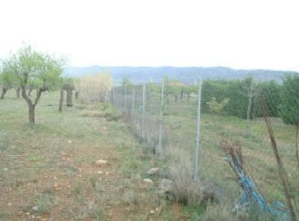 Suelo en venta en Arnedo, La Rioja, Lugar Horcajo, 23.010 €, 10270 m2