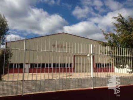 Industrial en venta en Lucena del Cid, Castellón, Calle Partida Pla de la Fustera, 430.972 €, 2286 m2