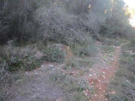 Suelo en venta en Benicarló, Castellón, Camino Viejo Azagador de la Raya, 6.023 €, 1150 m2