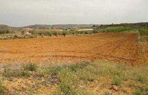 Suelo en venta en La Coloma, Les Coves de Vinromà, Castellón, Calle Polígono 502, 5.500 €, 5348 m2