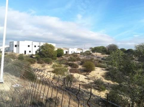 Suelo en venta en Almonte, Huelva, Calle Sector Garza Imperial, 8.200 €, 310 m2