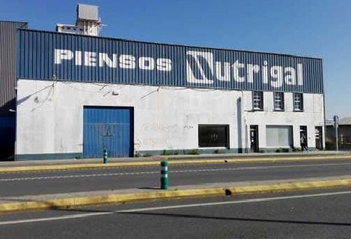 Industrial en venta en Freixeiro, Narón, A Coruña, Calle Cedeira, 442.000 €, 2071,47 m2
