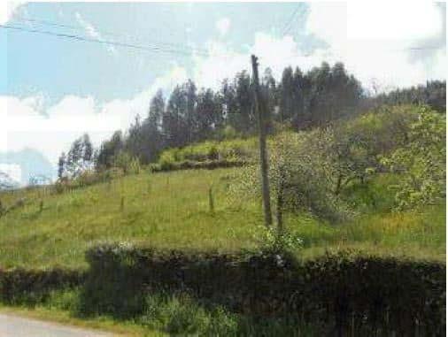 Suelo en venta en Villaviciosa, Asturias, Lugar Fonduxu, 25.700 €, 5032 m2