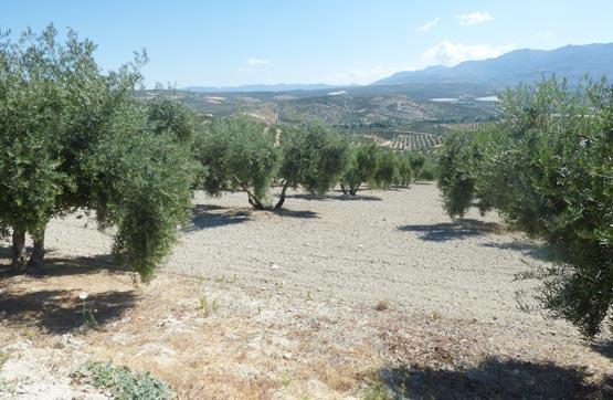 Suelo en venta en Vilches, Jaén, Paraje Laderas del Valle, 10.400 €, 6675 m2