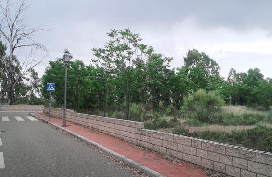 Suelo en venta en Linares, Jaén, Calle Casualidad, 63.300 €, 1055 m2