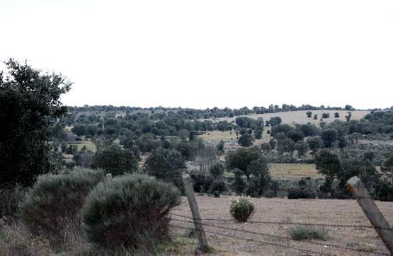 Suelo en venta en Suelo en la Alamedilla, Salamanca, 7.000 €, 15000 m2